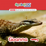 Gymba-TERM1-JAN-week02-Goanna (1)
