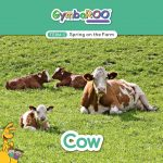 TKG_TB-SM-POSTS_TERM-3_SPRING-ON-THE-FARM_COW