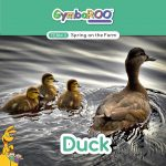 TKG_TB-SM-POSTS_TERM-3_SPRING-ON-THE-FARM_DUCK