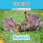 TKG_TB-SM-POSTS_TERM-3_SPRING-ON-THE-FARM_RABBIT